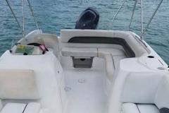 19' Deck Boat Rental